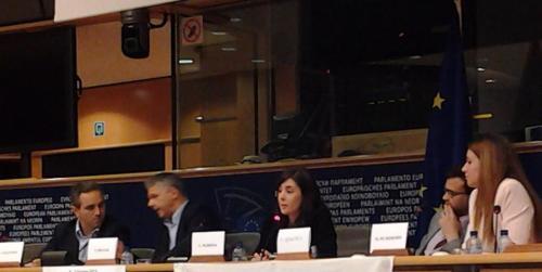La discussione aperta al Parlamento Europeo continua